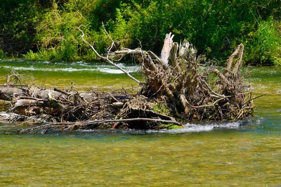 Das Wasserwirtschaftsamt gibt der Alz naturnahe Strukturen zurück. Gefördert werden die Renaturierungsmaßnahmen durch den Verein Naturnahe Alz.