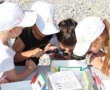 Kinder betrachten Wasserlebewesen aus der Alz.